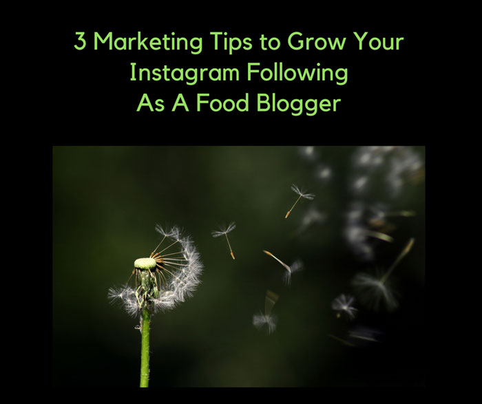 image for growing instagram followers
